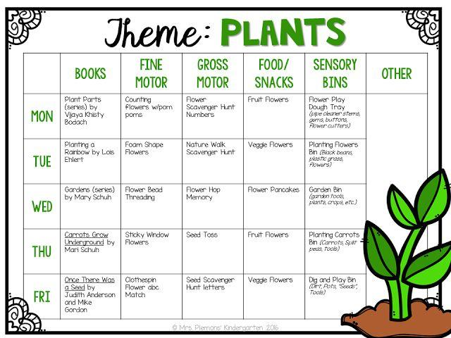 Preschool Worksheets On Plants 2