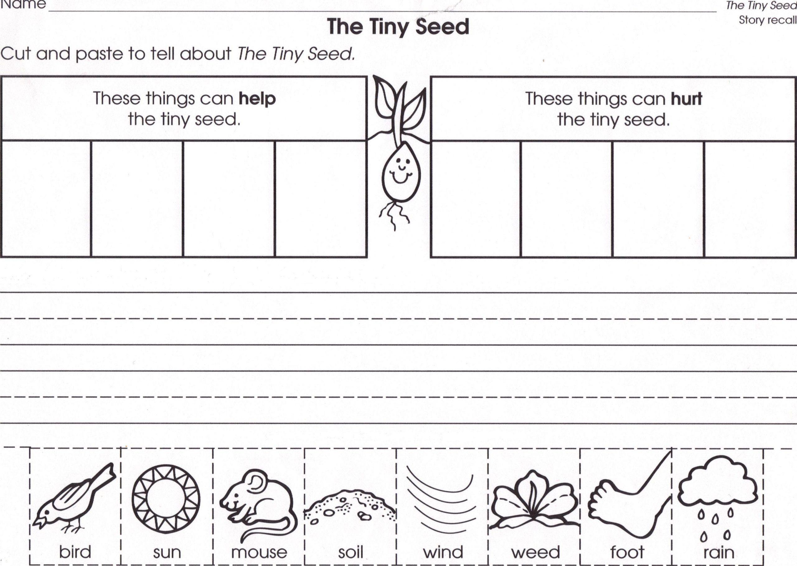 Preschool Worksheets On Plants 7