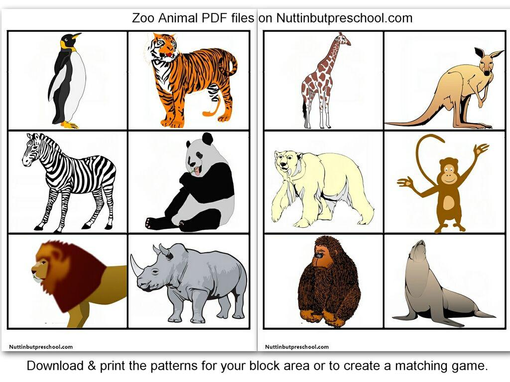 Preschool Worksheets Zoo Animals 5