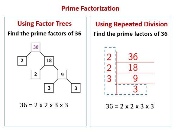 Math Worksheets Division 7