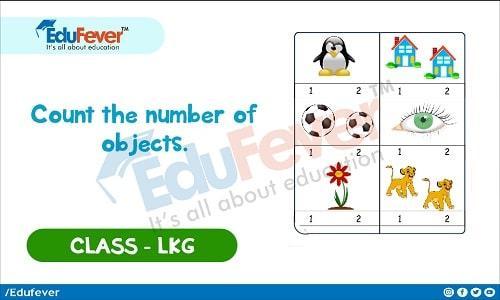 Math Worksheets Lkg Class 5