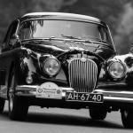 Jaguar bos treeker zw-9214