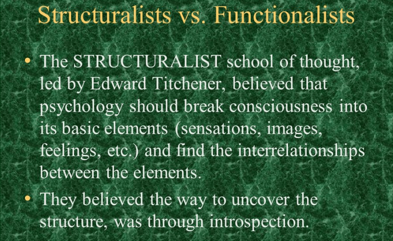 how did structuralism and functionalism differ