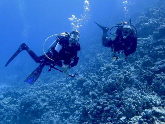 Deux plongeurs qui viennent de faire l'expérience de toucher des animaux marins dans la Mer Rouge