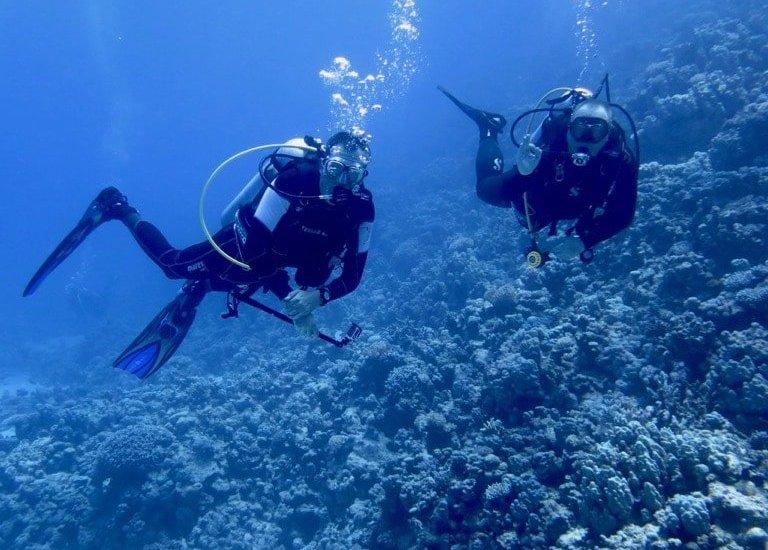 Toucher un plongeur, un acte pardonnable ? 😁