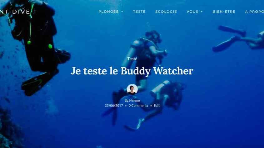 Des plongeurs explorent un tombant en Egypte