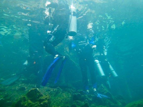 Des plongeurs ont fait surface à la sortie du cénote d'El Eden
