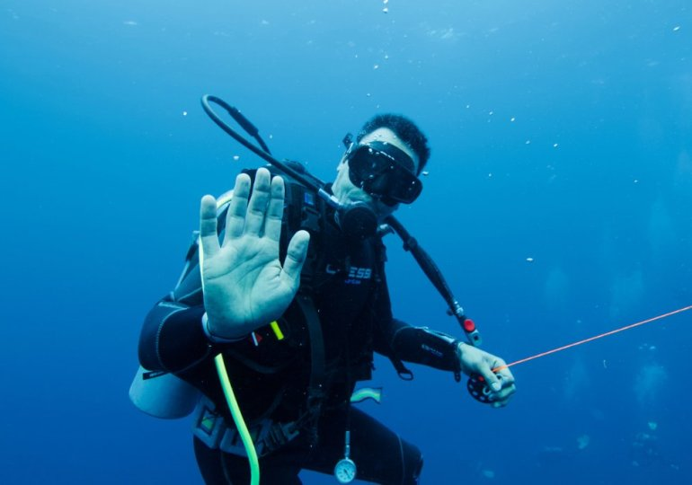 Divemaster, 4 * diver, dive guide, level 4 … how to understand all this?