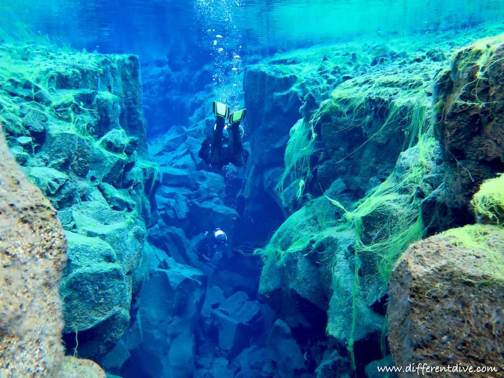 Un plongeur s'enfonce dans la faille de Silfra