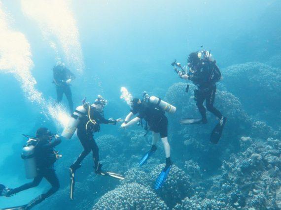 Des instagrameurs occupés à prendre leur plus belle photo sous-marine