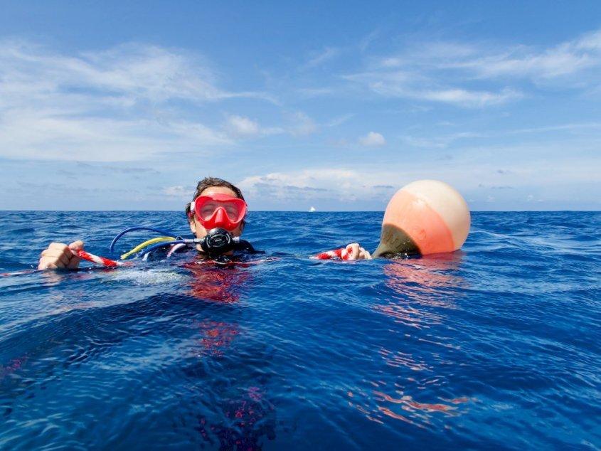 Certains sont prêts à prendre des risques pour pouvoir aller plonger