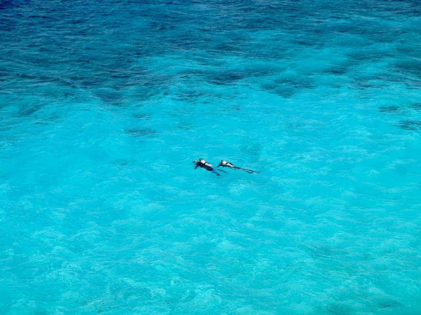 Deux personnes occupées à se mettre à l'eau pour plonger à Bonaire