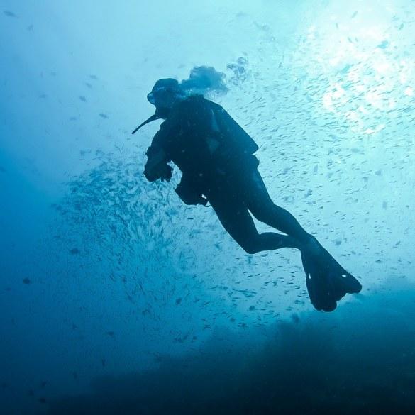 Un plongeur s'apprête à faire une de ses plongées profondes à l'air de l'année.