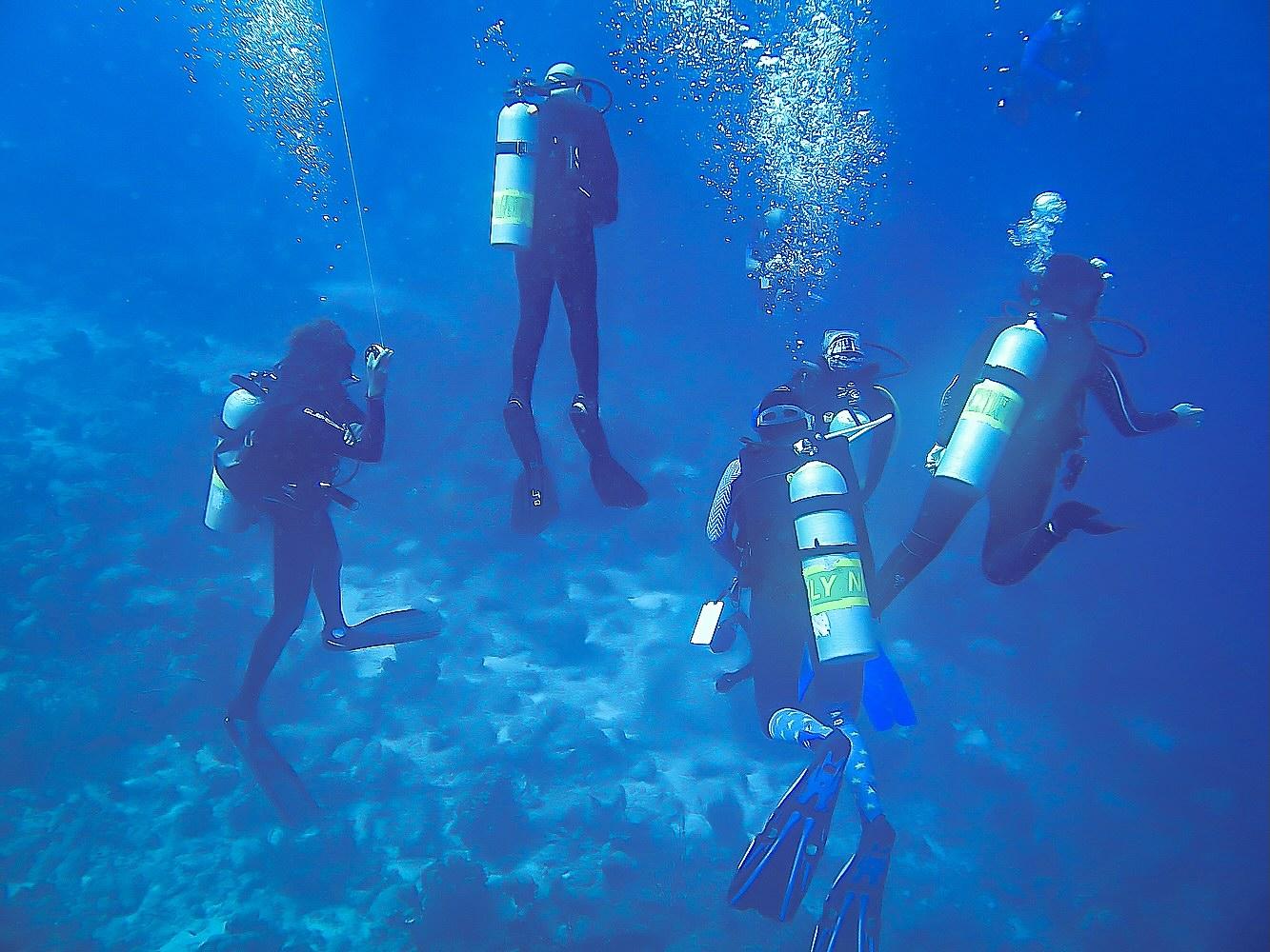 Le jour où j'ai plonger avec des américains.