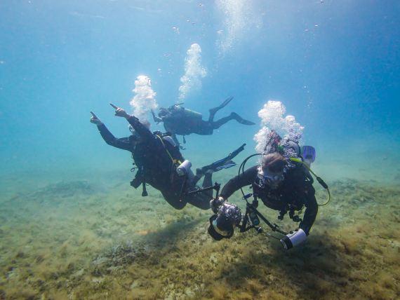 L'impact en plongée peut se concrétiser sous différentes formes comme la prise de photos et de leur partage.