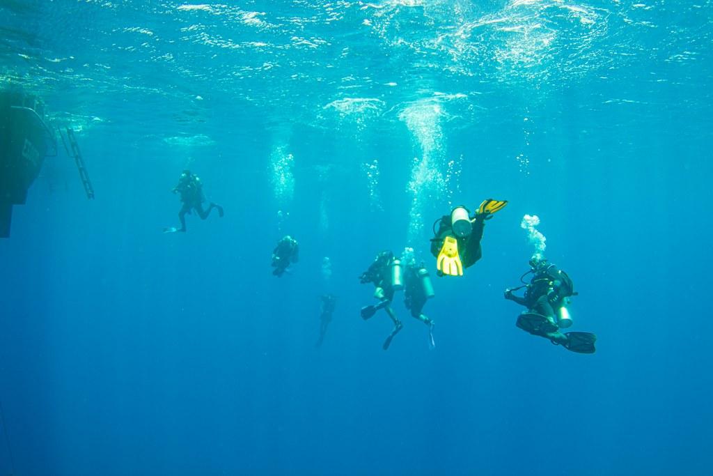 Une palanquée rejoint l'exocet lors d'une croisière de plongée en Egypte.