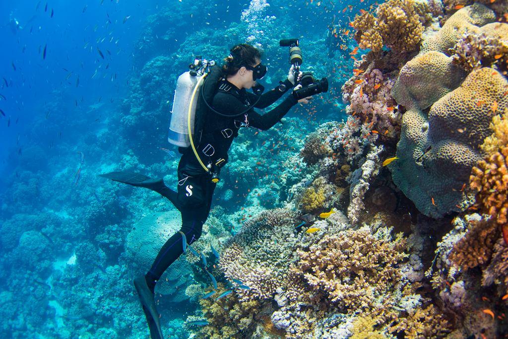 Une plongeuse photographie le tombant en allant plonger à Zabargad.