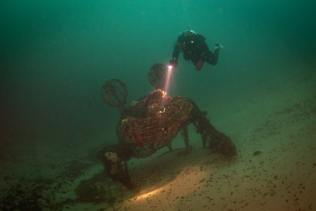 Le crabe au fond de la Gravière du Fort