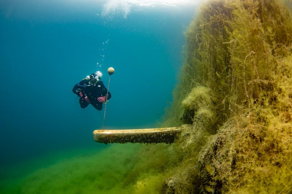 Ambiance sous l'eau à la Gravière du Fort.