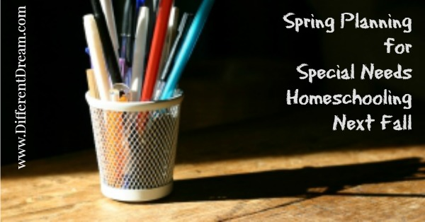 Plan Now for Next Year's Special Needs Homeschooling