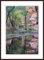 autumn-west-fork-sedona-3008