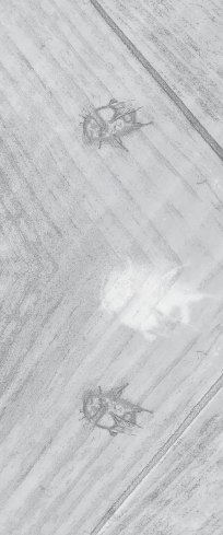 traces 9