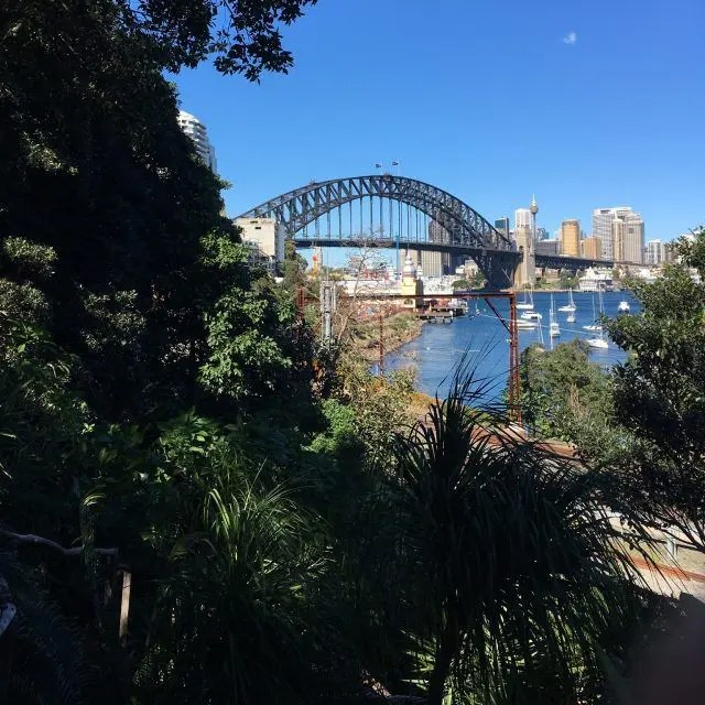 View of the Harbour Bridge from Wendy's Secret Garden