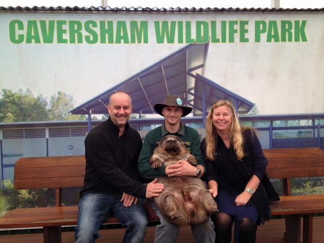 Having your picture taken with a wombat at Caversham Wildlife Park is one of my top fun things to do in Perth