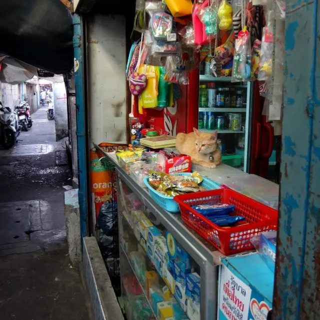Ban Krua Nua is a fantastic area to explore in the backstreets of Bangkok. If you're looking for a different experience on your first trip to Bangkok give it a visit