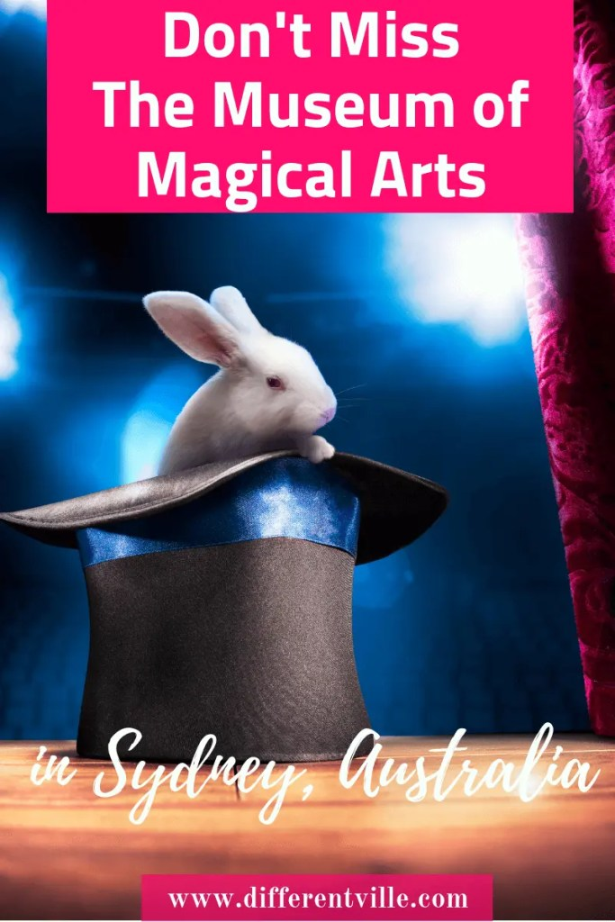 white magicians rabbit in a top hat