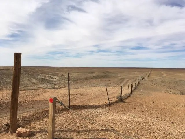 The Dog Fence stretching into the distance near the Breakaways