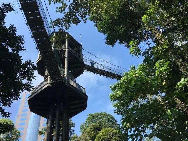 High tower on the Canopy Walkway in Kuala Lumpur