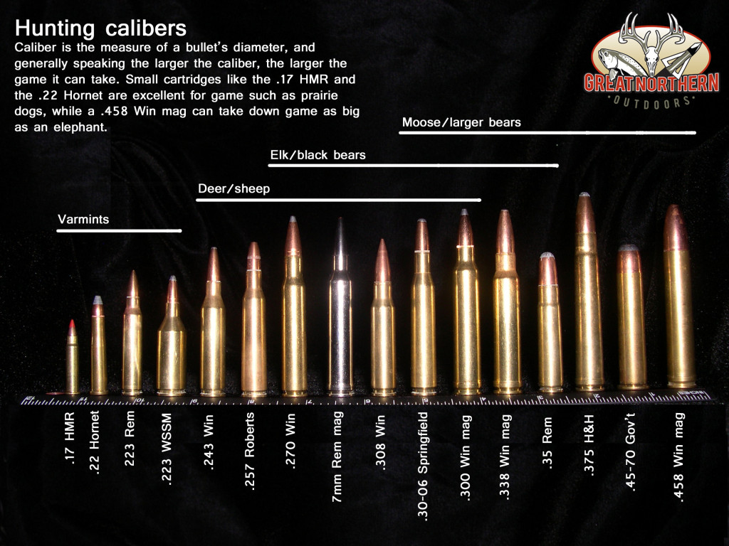 Great Northern Outdoors Bullet Comparison