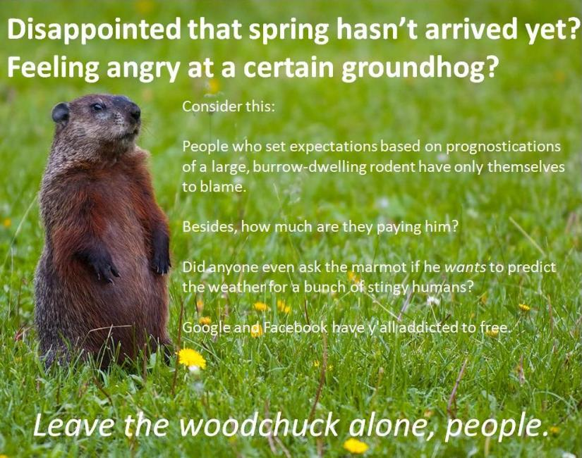 Leave the Groundhog Alone