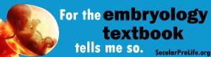 embryology_sticker