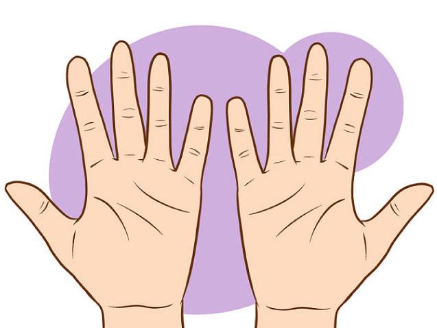 ¿Que significan las lineas de tu mano? :=