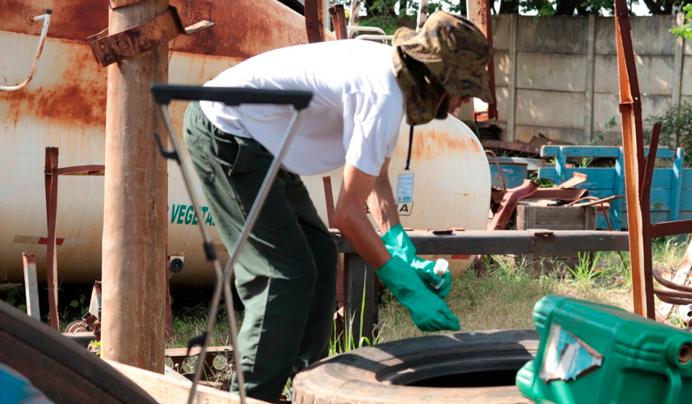 Casos de dengue sobem em Assis e preocupa a Vigilância Epidemiológica