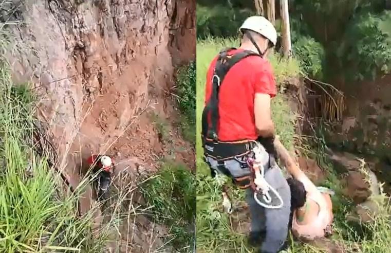 Adolescentes ficam ilhados em córrego e são resgatados de rapel pelos bombeiros em Garça