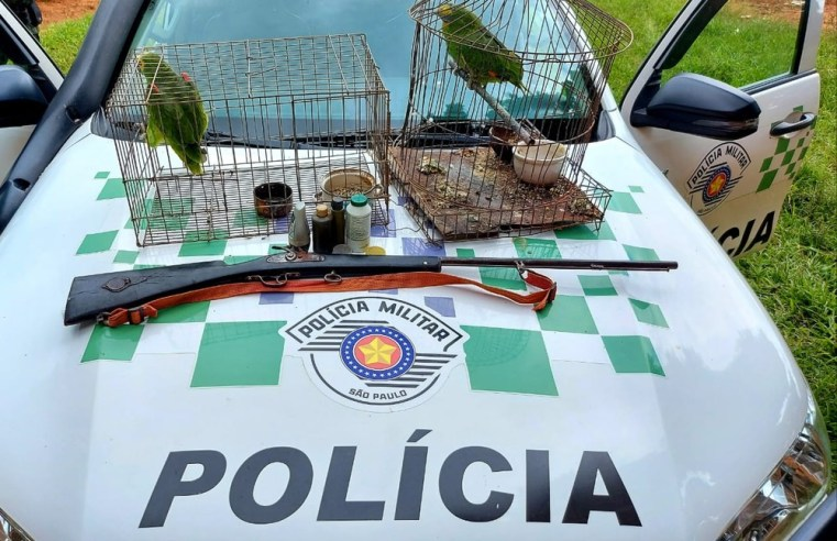 Polícia Ambiental resgata dois papagaios mantidos em cativeiro na zona rural de Rancharia