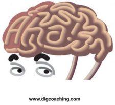 Aha Bob Brain