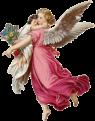 ANGELES, DUENDES, HADAS Y ELFOS (2045)