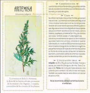 Artemisa propiedades fichas para imprimir
