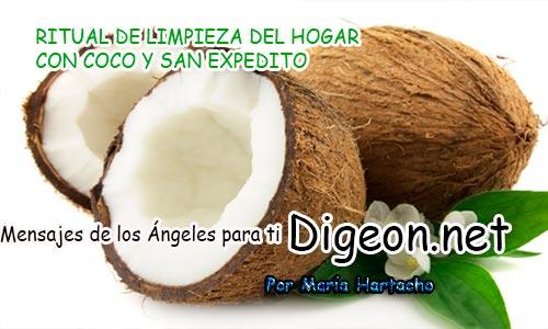 RITUAL DE LIMPIEZA DEL HOGAR CON COCO Y SAN EXPEDITO
