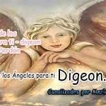 MENSAJES DE LOS ÁNGELES PARA TI - Digeon - 19 DE ENERO y el consejo diario de los ángeles, con los angeles y sus mensajes, y cada día un mensaje para ti, junto al tarot de los ángeles y los mensajes gratis de los ángeles, mensaje de tu ángel para hoy 19 de enero y el mensaje de tus ángeles para ti con el pronostico de los ángeles hoy 19 de enero te dice tu ángel , con rituales angelicales, también el tarot de los ángeles, ángeles y arcángeles, la voz de los ángeles, comunicándote con tu ángel,comunicando con los ángeles los ángeles y sus mensajes para hoy, cada día un mensaje para ti, ángel del día gratis