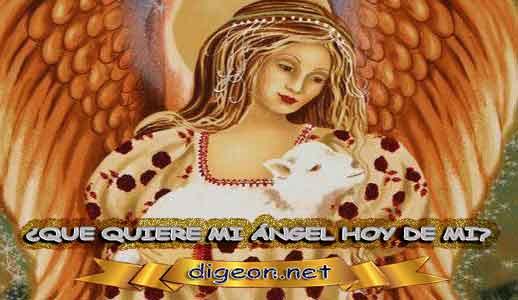 ¿QUÉ QUIERE MI ÁNGEL HOY DE MÍ? 01 de Junio + DECRETO DIVINO + MENSAJES DE LOS ÁNGELES, enseñanza metafísica, mensajes angelicales el consejo diario de los ángeles,