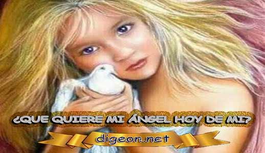 ¿QUÉ QUIERE MI ÁNGEL HOY DE MÍ? 02 de mayo + DECRETO DIVINO + MENSAJES DE LOS ÁNGELES, enseñanza metafísica, Que me dice mi ángel de la guarda hoy, y el consejo diario de los ángeles, con los angeles y sus mensajes, y cada día un mensaje para ti, junto al tarot de los ángeles y los mensajes gratis de los ángeles, mensaje de tu ángel para hoy 02 de mayo y el mensaje de tus ángeles para ti con el pronostico de los ángeles hoy 02 de mayo. te dice tu ángel , con rituales angelicales, también el tarot de los ángeles, ángeles y arcángeles, la voz de los ángeles, comunicándote con tu ángel,comunicando con los ángeles, los ángeles y sus mensajes para hoy, cada día un mensaje para ti, ángel del día gratis, todo sobre la metafísica y palabras de metafísica, que quiere mi ángel de mi