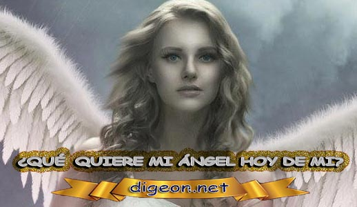 ¿QUÉ QUIERE MI ÁNGEL HOY DE MÍ? 08 de NOVIEMBRE + DECRETO DIVINO + MENSAJES DE LOS ÁNGELES, enseñanza metafísica, mensajes angelicales, el consejo diario de los ángeles, con los Ángeles y sus mensajes, cada día un mensaje para ti, tarot de los ángeles, mensajes gratis de los ángeles, mensaje de tu ángel para hoy 08 de noviembre, pronóstico de los ángeles hoy, reiki, palabra de dios hoy, evangelio del día, espiritualidad,lecturas del día, lecturas del día de hoy,evangelio del domingo,dios, evangelio de hoy, san juan de dios,jesucristo, jesus, inri, cristo, holistico, avatar