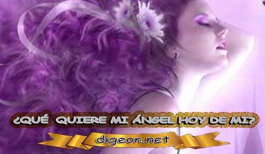 ¿QUÉ QUIERE MI ÁNGEL HOY DE MÍ? 09 de NOVIEMBRE + DECRETO DIVINO + MENSAJES DE LOS ÁNGELES, enseñanza metafísica, mensajes angelicales, el consejo diario de los ángeles, con los Ángeles y sus mensajes, cada día un mensaje para ti, tarot de los ángeles, mensajes gratis de los ángeles, mensaje de tu ángel para hoy 09 de noviembre, pronóstico de los ángeles hoy, reiki, palabra de dios hoy, evangelio del día, espiritualidad,lecturas del día, lecturas del día de hoy,evangelio del domingo,dios, evangelio de hoy, san juan de dios,jesucristo, jesus, inri, cristo, holistico, avatar