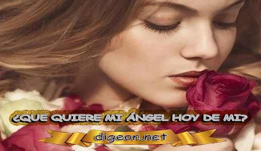 ¿QUÉ QUIERE MI ÁNGEL HOY DE MÍ? 19 de NOVIEMBRE + DECRETO DIVINO + MENSAJES DE LOS ÁNGELES, enseñanza metafísica, mensajes angelicales, el consejo diario de los ángeles, con los Ángeles y sus mensajes, cada día un mensaje para ti, tarot de los ángeles, mensajes gratis de los ángeles, mensaje de tu ángel para hoy 19 de noviembre, pronóstico de los ángeles hoy, reiki, palabra de dios hoy, evangelio del día,
