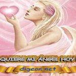 ¿QUÉ QUIERE MI ÁNGEL HOY DE MÍ? 21 de NOVIEMBRE + DECRETO DIVINO + MENSAJES DE LOS ÁNGELES, enseñanza metafísica, mensajes angelicales, el consejo diario de los ángeles, con los Ángeles y sus mensajes, cada día un mensaje para ti, tarot de los ángeles, mensajes gratis de los ángeles, mensaje de tu ángel para hoy 21 de noviembre, pronóstico de los ángeles hoy, reiki, palabra de dios hoy, evangelio del día, espiritualidad,lecturas del día, lecturas del día de hoy,evangelio del domingo,dios, evangelio de hoy, san juan de dios,jesucristo, jesus, inri, cristo, holistico, avatar